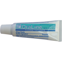.85 oz. Patient Size ADA Accepted Fluoride Mint Toothpaste